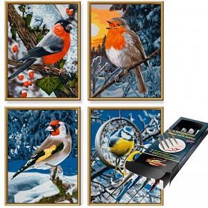 Malen nach Zahlen Wintervögel inkl. Pinselset SET Zubehör Pinsel