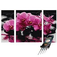Malen nach Zahlen Orchideen inkl. Spezialpinselset Noris Schipper