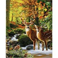 Schipper Malen nach Zahlen Hirsche im Wald 40 x 50 cm