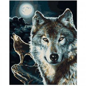 Malen Nach Zahlen Wölfe Schipper