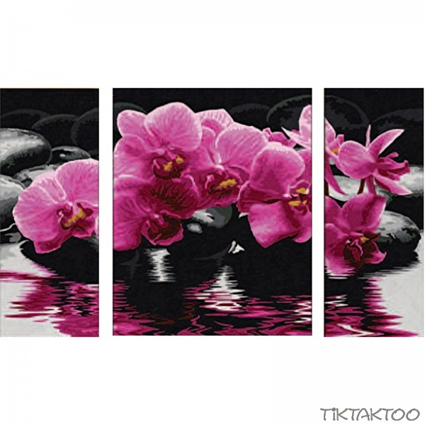 malen nach zahlen schipper orchideen triptychon 50x80cm tiktaktoo. Black Bedroom Furniture Sets. Home Design Ideas