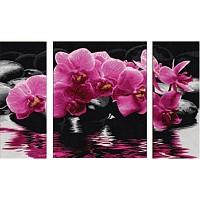 Malen nach Zahlen - SCHIPPER - Orchideen Triptychon 50x80cm