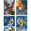 Malen Nach Zahlen Wintervögel Quattro schipper